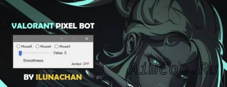 Valorant Pixel Bot
